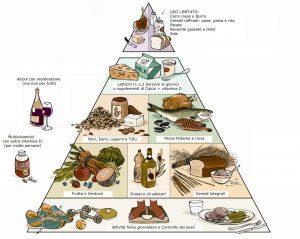 piramide harvard