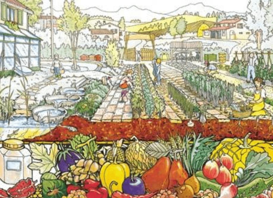 Corso di orticultura da balcone